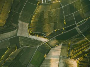 aerial view of beautiful agro fields in evening, europe